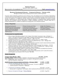 Best It Resume Sample by Great Resumes Examples