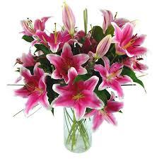 Flowers Delivered Uk - send sensation lilies for uk flower delivery from clare florist