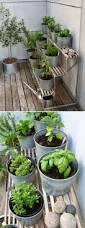 top 24 awesome ideas to display your indoor mini garden indoor