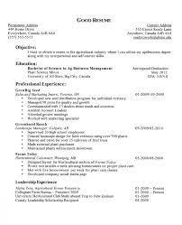 Breakupus Unusual Cv Resume Resume Cv Canada With Lovable Job     Break Up Breakupus Engaging Cover Letter Objective Resumes Professional Resume Templates With Lovely Objective Resumes With Horticultural Columnist