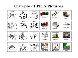 Picture Exchange Communication System  PECS  dissertation examples