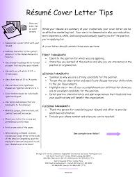 about essay templates graphic organisers on pinterest paragraph