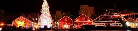 25 magnificent examples of christmas lights decoration 1 multy