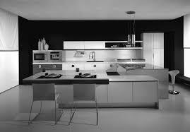 Italian Kitchen Design Kitchen Fluffy Meaning Of L Shaped Layout Italian Kitchen Design