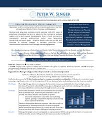 Best Executive Resume Format by Microsoft Word Rosa Vargas Business Sales Development