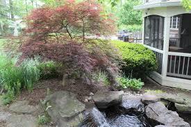 space planning to make a beautiful vienna virginia backyard better