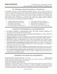 Sales Executive Resume Template With Cv Template Word European And