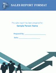 Business Analysis Report Sample  Business Report Format Executive