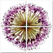 flower print quadtych photo prints on wood u2013 elementem photography