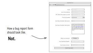 what is a bug report the essential guide to bug reports