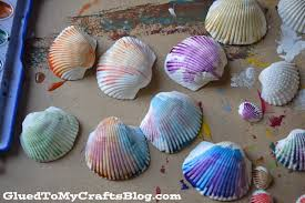 seashell frame kid craft