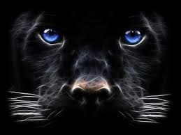 windows 7 animated desktop wallpaper big cat digital art hd