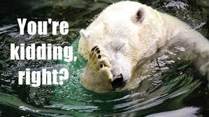Sir David Attenborough has said his grandchildren may not see polar bears after seeing first hand studylib net