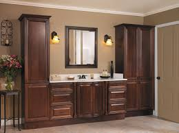bathroom cabinet ideas racetotop com
