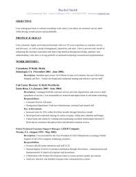 Resume Examples  Example Of Resume Objective For Customer Service     AngkorriceSpirit