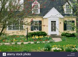 yellow cape cod style home with blooming spring flowers and cat in