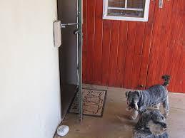 catflap in glass door cat flap or dog door alternative locklatch usa
