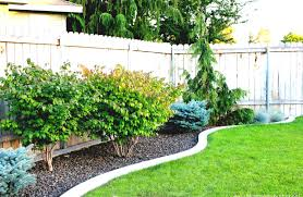 Small Rock Garden Pictures by Easy Simple Garden Designs For Beginners