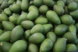 image of avocado fruits