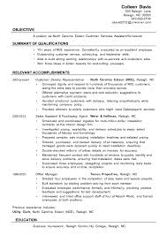 Examples Of A Customer Service Representative Resume Top Pick For     Pinterest Financial Service Representative Resume  sample resume financial       call center customer service