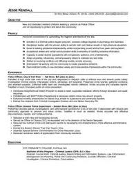 Free Chief Medical Officer Resume Sample   Medical Affairs for PDF