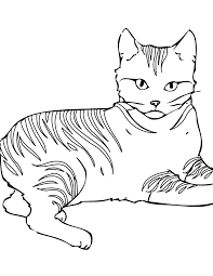 cats coloring pages to print