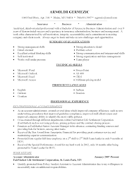 Technical Skills On Cv Career Change Resume Objective Statement Examples Resume For