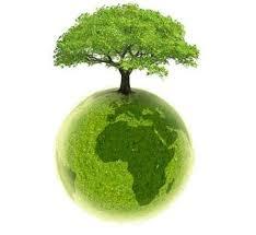 économisons le papier !!! dans les arbres est la natures