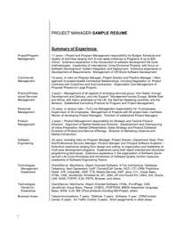 Examples Of Professional Summary For Resume by General Resume Summary Examples Photo General Resume Summary