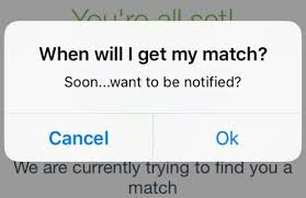 Dating apps you     ve never heard of   Stuff co nz          jpg