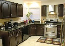 Cabinet Styles For Kitchen Best 25 Repainted Kitchen Cabinets Ideas On Pinterest Painting