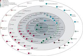 alzheimer u0027s disease clinical trials and drug development the