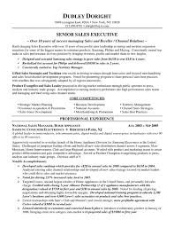 Channel Sales Resume Example Resume Resource