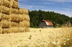 hay stack kits centerpieces diy barns barn pole ideas build