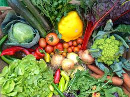 Vegetables by 7 Best Vegetable Boxes The Independent