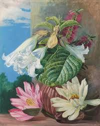marianne north kew botanical prints