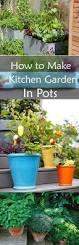 best 25 gardening in apartments ideas on pinterest diy herb