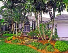 landscaping with palms grand palms project gallery south