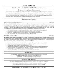 Area Sales Manager Resume Sample by Resume Samples For Sales Manager Channel Sales Manager Resume