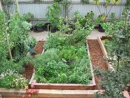 Planning A Raised Bed Vegetable Garden by Designing A Raised Bed Vegetable Garden Margarite Gardens