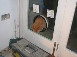 cat flaps in glass doors gallery glass door interior doors