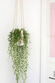 hanging leather strap planter diy u2013 a beautiful mess