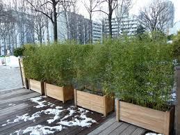 Deco Mur Exterieur Jardinière De Bambous Pendant La Mauvaise Saison Terrasse De L