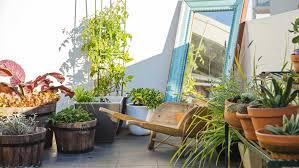 Rooftop Garden Ideas Unique Rooftop Gardening Ideas Design Ideas 8320