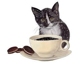 gatto a colazione