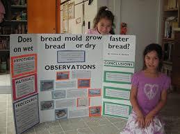 research paper rubric  th grade lbartman com  quot  th Grade Science Fair Projects Ideas quot    Simple Science Experiments  Simple Science Project
