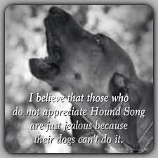 training a bluetick coonhound to hunt best 25 redbone coonhound ideas on pinterest red bone hunting