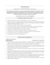 Ecommerce Resume Sample by Ecommerce Resume Sample Resume For Your Job Application
