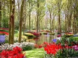 Jardins de Persefone Images?q=tbn:ANd9GcSTNsQp7CMlm3GYox7XoRLjcwWpjD-ba33m1BHcsXp6PSwUFFKX9w