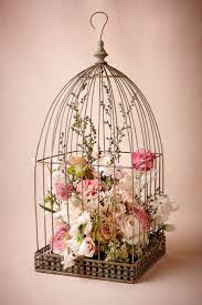 Home Decor Birds by Top 25 Best Birdcage Decor Ideas On Pinterest Bird Cage